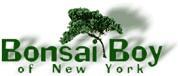 Bonsai Boy Coupons & Promo Codes